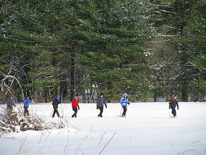 Columbia Land Conservancy snowshoe trek